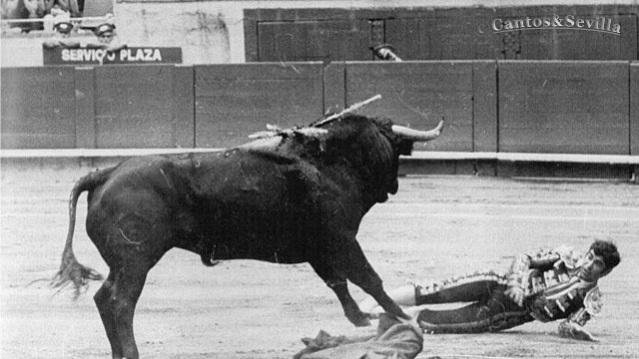 La trágica cogida de José Falcón.